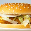 Crisp chicken burger with onion cheese lettuce - Stock Photo