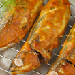 Baked Indian Mackerels with Spicy Coconut Sauce - Stock Photo