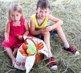 Friends in the village on a haystack with a basket of vegetables — Stock Photo