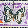 "CENTRAL AFRICAN REPUBLIC - CIRCA 1960: A stamp printed in Central African Republic from the ""Butterflies"" issue shows a Charaxe mobilis butterfly, circa 1960. - Stock Photo"
