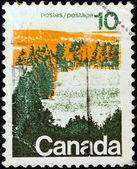 CANADA - CIRCA 1972: A stamp printed in Canada shows a forest, central Canada, circa 1972. — Foto Stock