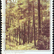 "CYPRUS - CIRCA 1985: A stamp printed in Cyprus from the ""Cyprus Scenes and Landscapes"" issue shows forestry for development, circa 1985. — Stock Photo"