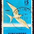 SINGAPORE - CIRCA 1966: A stamp printed in Singapore shows a Black-naped Tern bird, circa 1966. - Stock Photo