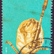 "GREECE - CIRCA 1975: A stamp printed in Greece , from the '""traditional musical instruments"" issue shows a bagpipe (gaida), circa 1975. — Stock Photo"