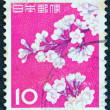 Royalty-Free Stock Photo: JAPAN - CIRCA 1962: A stamp printed in Japan shows cherry blossoms, circa 1962.