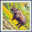 "GUINEA - CIRCA 1975: A stamp printed in Guinea from the ""Wild Animals"" issue shows a Black Rhinoceros (Diceros bicornis), circa 1975. — Stock Photo"