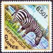"GUINEA - CIRCA 1975: A stamp printed in Guinea from the ""Wild Animals"" issue shows a Grant's Zebra (Equus quagga granti), circa 1975. — Stock Photo"