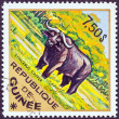 "GUINEA - CIRCA 1975: A stamp printed in Guinea from the ""Wild Animals"" issue shows an African Buffalo (Syncerus caffer), circa 1975. — Stock Photo"
