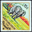 "GUINEA - CIRCA 1975: A stamp printed in Guinea from the ""Wild Animals"" issue shows an African Elephant (Loxodonta Africana), circa 1975. — Stock Photo"