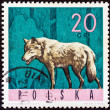 "POLAND - CIRCA 1965: A stamp printed in Poland from the ""Forest Animals"" issue shows a wolf, circa 1965. — Stock Photo"