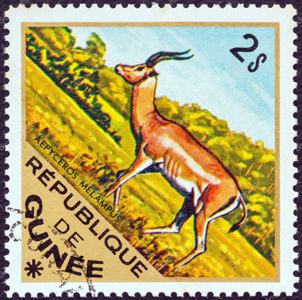 "GUINEA - CIRCA 1975: A stamp printed in Guinea from the ""Wild Animals"" issue shows a  Impala (Aepyceros melampus), circa 1975. — Stock Photo #11898136"