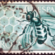 "图库照片: SPAIN - CIRCA 1962: A stamp printed in Spain from the ""Europa"" issue shows Honey Bee and Honeycomb, circa 1962."
