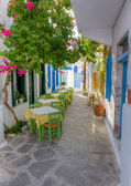 Colorful alley in Plaka village, Milos island, Cyclades, Greece — Stock Photo
