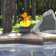 Stock Photo: Eternal flame ,Russi, lermontov