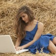 Girl in blue dress typing on laptop — Stock Photo #11643104