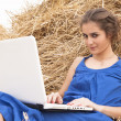 Brunette girl in blue dress typing on laptop on haystack — Stock Photo