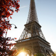 Paris, Eiffel Tower in spring — Stock Photo #11155786