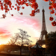Paris, Eiffel Tower in spring — Stock Photo #11155924