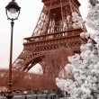 Eiffel Tower in spring time, Paris, France — Stock Photo #11156104