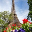 Eiffel Tower in spring time, Paris, France — Stock Photo #11156215