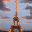 Famous Eiffel Tower with spring tree, Paris, France — Stock Photo #11156617