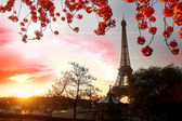 Paris, Eiffel Tower in spring — Stock Photo