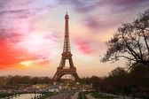 Famous Eiffel Tower with spring tree, Paris, France — Stock Photo
