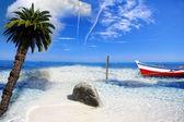 ビーチの楽園 — ストック写真