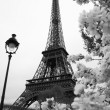Eiffel Tower — Stock Photo #11280649
