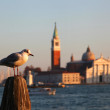 View of San Giorgio island, Venice, Italy — Stock Photo
