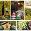 Chianti vineyard landscape in Tuscany, Italy — Stock Photo #11790552