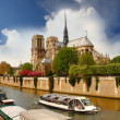 Paris, Notre Dame cathedral in spring time, France — Stock Photo #11796039