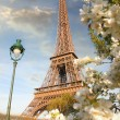 Eiffel Tower during spring time in Paris, France — Stock Photo #11796778