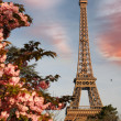 Eiffel Tower during spring time in Paris, France — Stock Photo #11797004