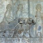 Постер, плакат: Ancient bas reliefs of Persepolis Iran