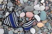 Swimsuit top on pebbles. Batumi. Georgia. — Stock Photo