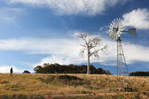 A rural landscape with windmill. Near Oberon. New South Wales. Australia. — Stock Photo