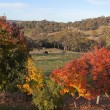 Autumn colours in countryside tablelands near Oberon. NSW. Australia. - Stock Photo