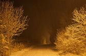 Heavy snowfall at night. Moscow Region. Russia. — Stock Photo