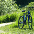 Bicyclise in a grass — Stock Photo