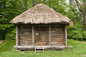 Old hut — Foto de Stock