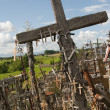Hill of crosses. Lithuania. — Stock Photo