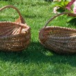 Stock Photo: Two baskets