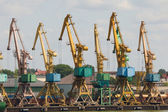 Port. krane. — Stockfoto