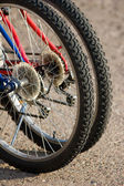 Bike wheels — Stock Photo