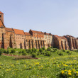 Stock Photo: Grudziadz, old town view