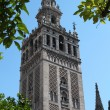 图库照片: Cathedral in Sevillin Spain, Giraldwith bells