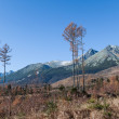 Tatras in Slovakia, Lomnica peak — Stock Photo