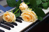 Three roses on a piano — Stock Photo