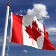 Canada flag (with clipping path) — Stock Photo